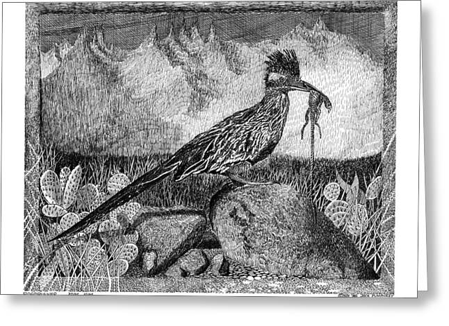 Pen And Ink Drawing Greeting Cards - Hungry Roadrunner Yum Yum Yum Greeting Card by Jack Pumphrey
