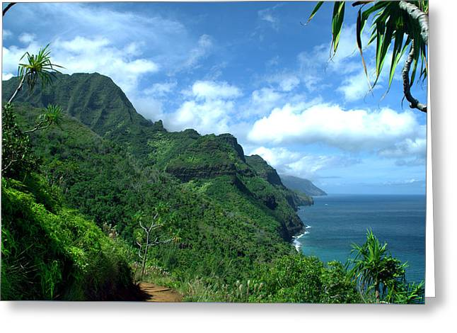 Na Greeting Cards - Na Pali Coast Kauai Greeting Card by Brian Harig