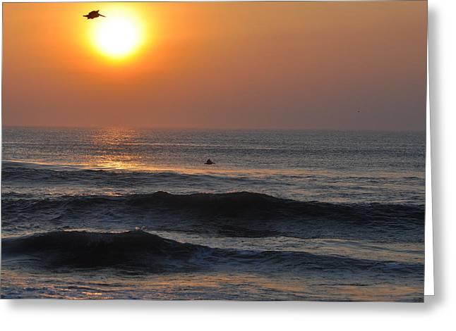 Paul Lyndon Phillips Greeting Cards - Nags Head Pelican Sunrise - OBX03560 Greeting Card by Paul Lyndon Phillips