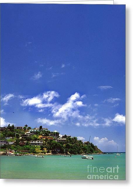 Puerto Rico Digital Greeting Cards - Naguabo Shoreline Greeting Card by Thomas R Fletcher