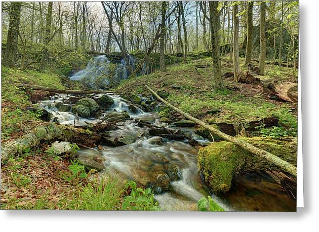 Naked Creek Falls Greeting Card by Metro DC Photography