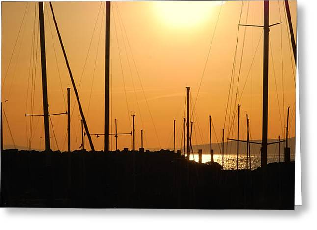 Naked Masts Greeting Card by Steven Milner