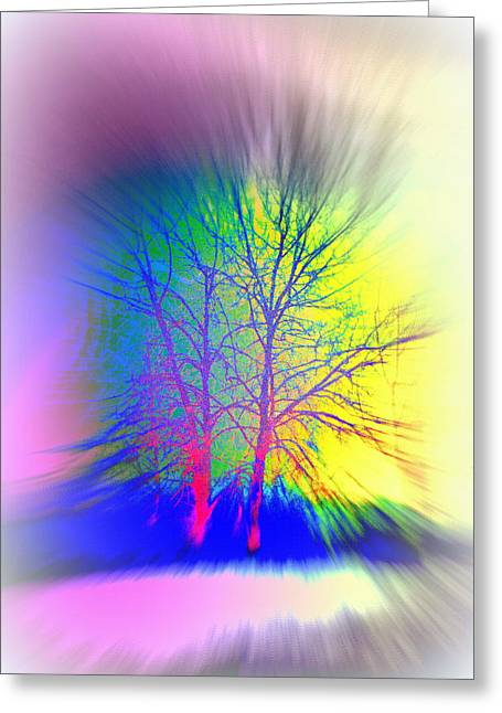 Naked Trees Can Also Be Colorful  Greeting Card by Hilde Widerberg