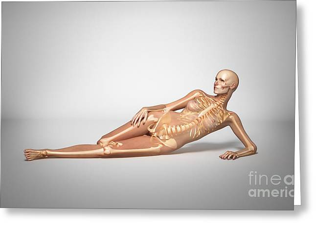 Costae Fluitantes Greeting Cards - Naked Woman Laying Down With Skeletal Greeting Card by Leonello Calvetti