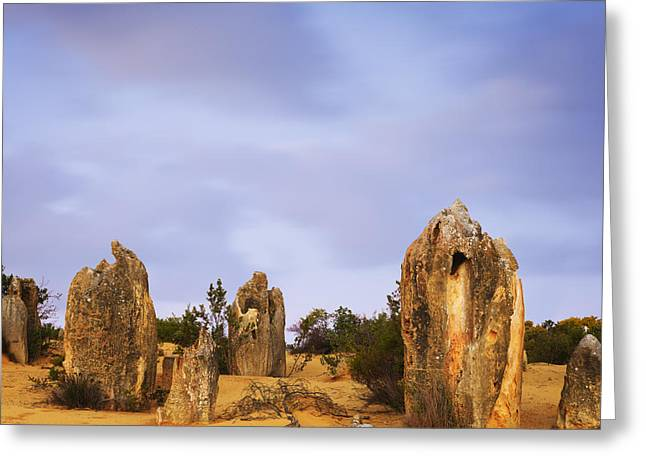 Pinnacle Greeting Cards - Nambung National Park Greeting Card by Colin and Linda McKie