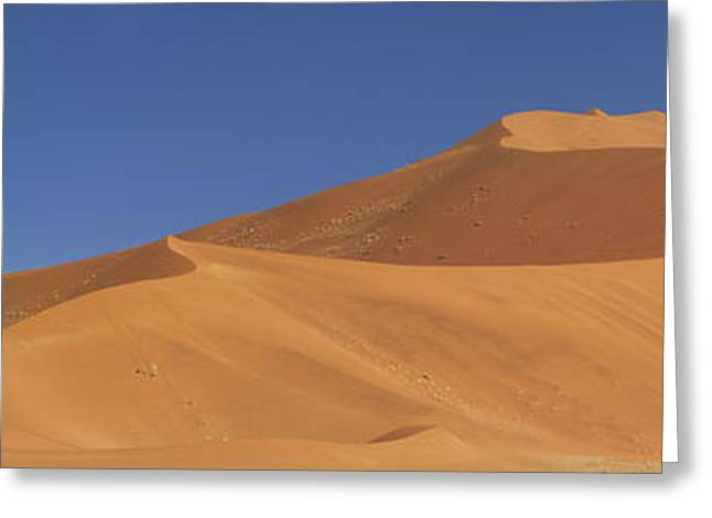 Namibian Desert Greeting Card by Richard Garvey-Williams