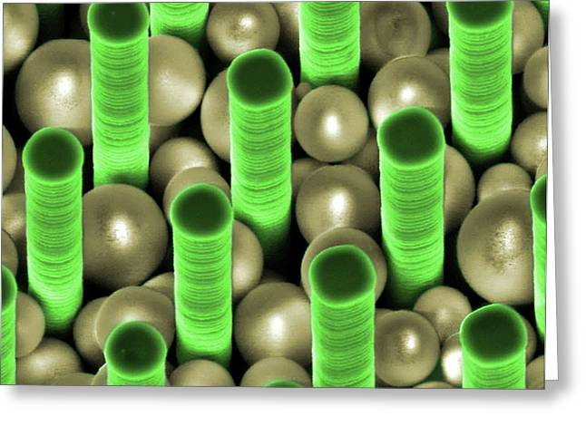 Nanoparticles Trapped In Pillar Array Greeting Card by Center For Nanophase Materials Sciences, Ornl