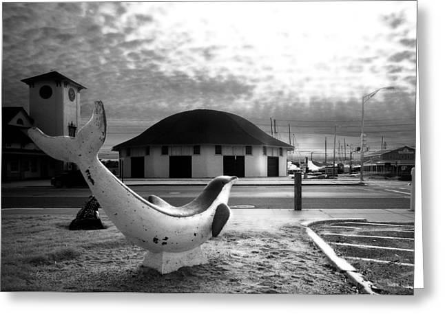 Nantasket Beach Greeting Cards - Nantasket Dolphin Greeting Card by David DeCenzo