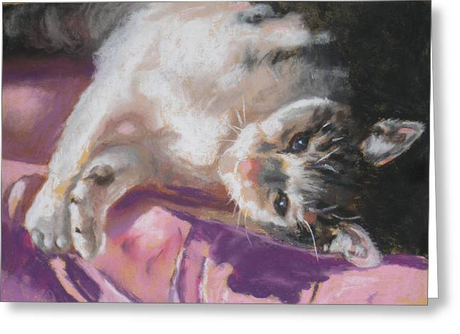 Cushion Pastels Greeting Cards - Nap time for Kitty Greeting Card by Janice Harris