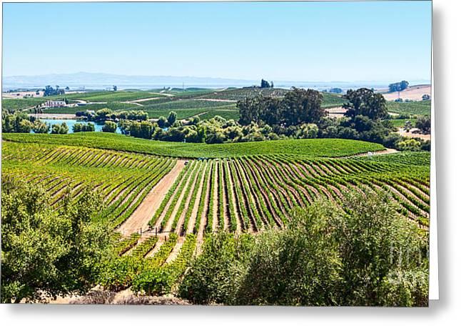Rolling Hills Vinyards Greeting Cards - Napa Valley - Wine Vineyards in Napa Valley California. Greeting Card by Jamie Pham