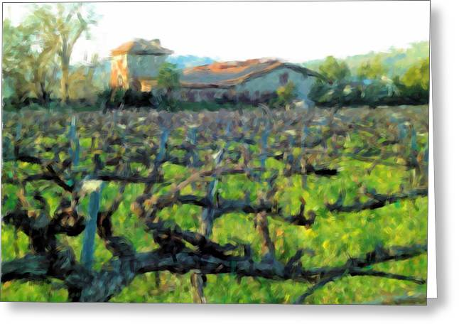 Viticulture Digital Greeting Cards - Napa Valley Winery in Winter Greeting Card by Bud Anderson