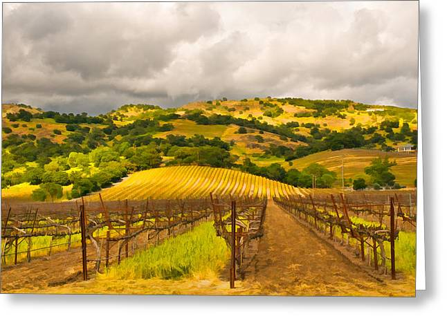 Napa Valley Digital Greeting Cards - Napa Vineyard Greeting Card by Mick Burkey