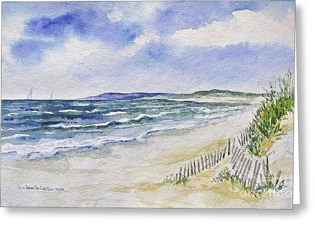 Sand Fences Greeting Cards - Napatree Beach Greeting Card by Joan Hartenstein