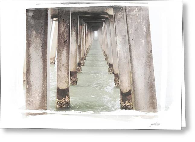 Naples Greeting Cards - Naples FL Pier Greeting Card by Gary Gunderson