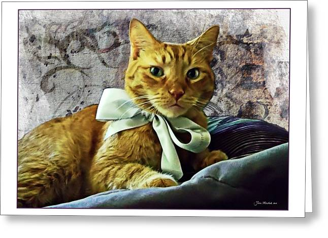 Napoleon And The Ribbon Greeting Card by Joan  Minchak
