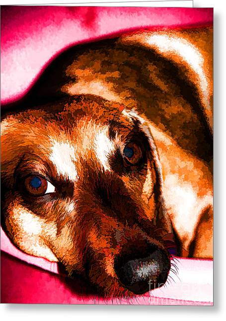 Eyebrow Greeting Cards - Napping After Dinner Greeting Card by Mariola Bitner