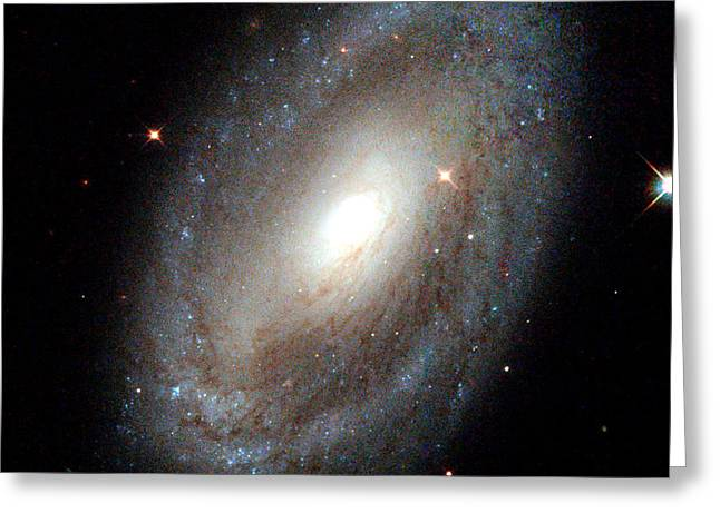 Stary Sky Greeting Cards - NASA Spiral Galaxy Greeting Card by Rose Santuci-Sofranko