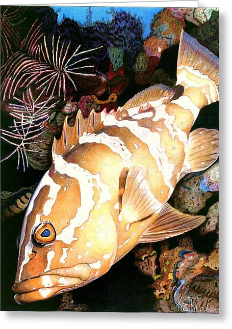 Diving Drawings Greeting Cards - Nassau Grouper Greeting Card by Karen Rhodes