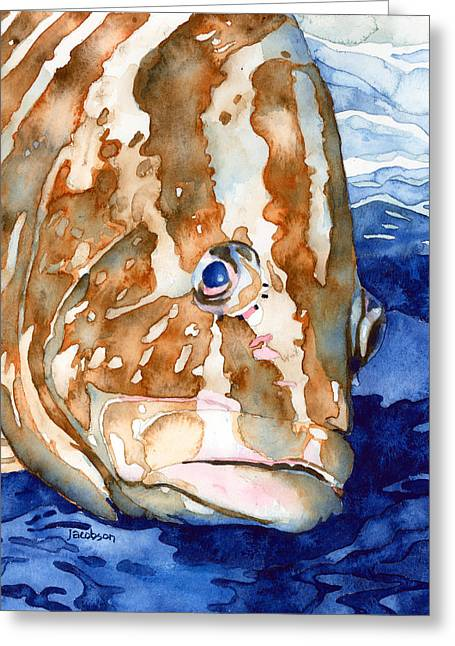 Nassau Grouper Greeting Cards - Nassau Grouper Portrait Greeting Card by Pauline Jacobson