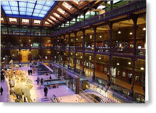 National Museum of Natural History - Paris France - 011370 Greeting Card by DC Photographer