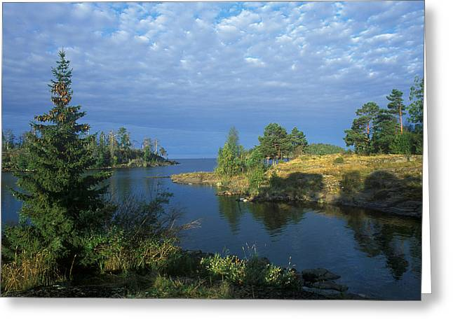 Conservation Area Greeting Cards - National Park VALAAMSKY Greeting Card by Anonymous