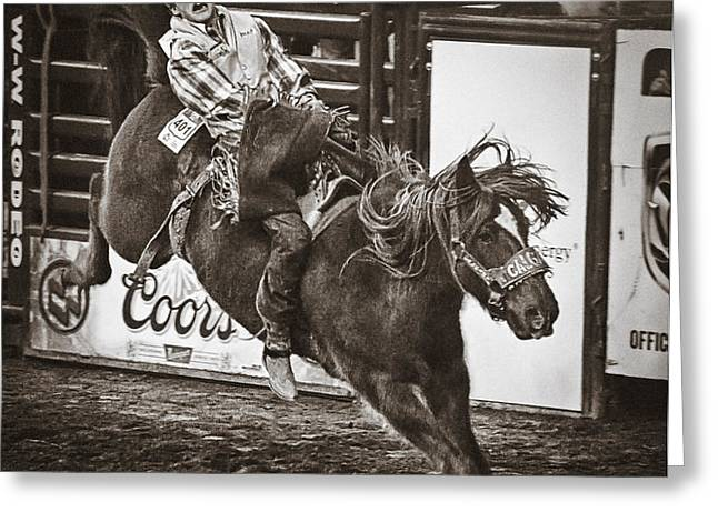 National Stock Show Bareback Riding Greeting Card by Priscilla Burgers