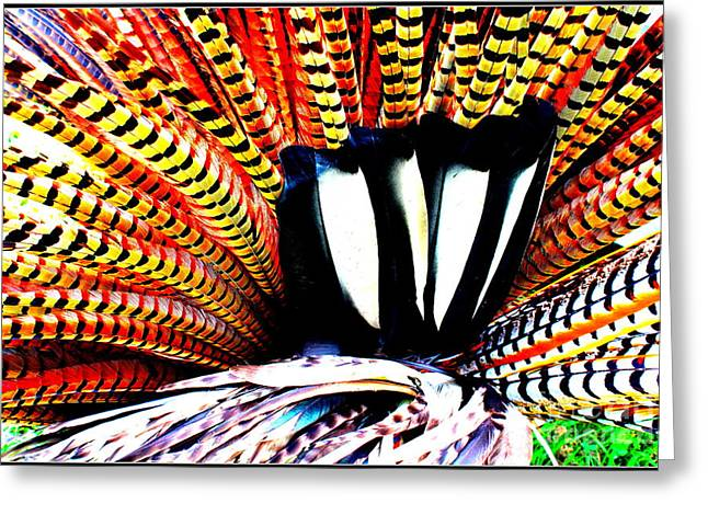 North American Indian Ethnicity Greeting Cards - Native American Feather Headdress Greeting Card by  Photographic Art and Design by Dora Sofia Caputo