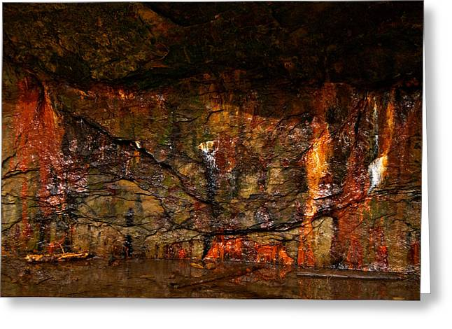 Indiana Autumn Greeting Cards - Natural Abstract Greeting Card by Norm Hoekstra