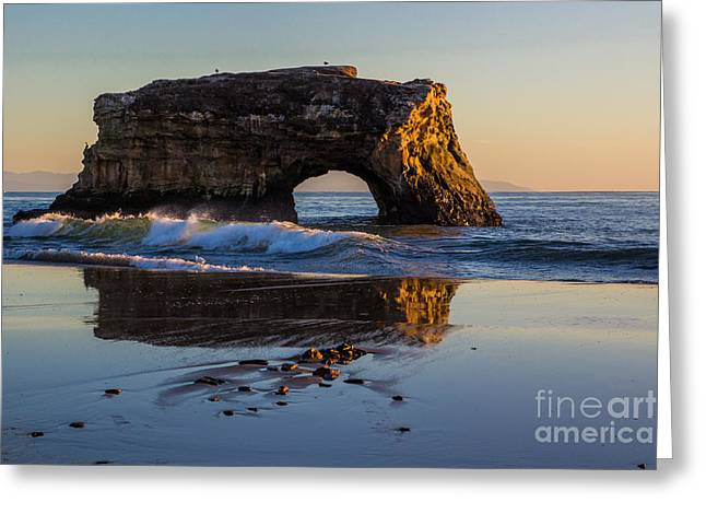 Santa Cruz Greeting Cards - Natural Bridge Greeting Card by Suzanne Luft