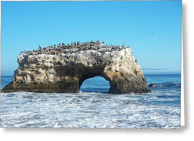 Blue Mudstone Greeting Cards - Natural Bridges State Beach Greeting Card by Nomad Art And  Design