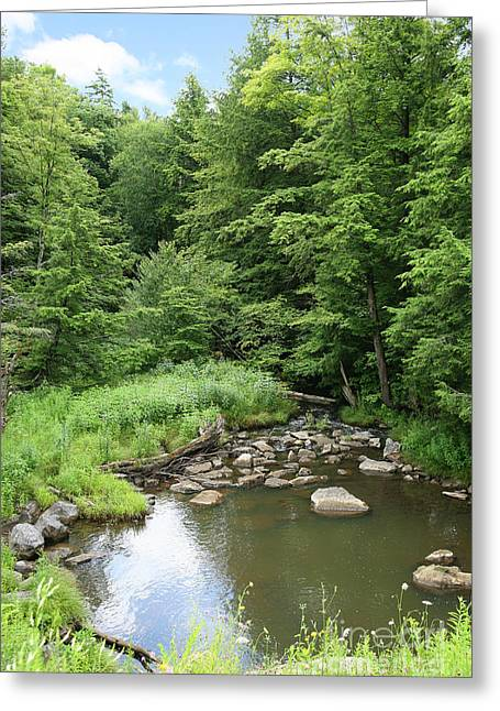 Suzi Nelson Greeting Cards - Natural Creek Landscape Greeting Card by Suzi Nelson