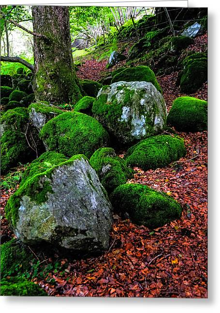 Lush Green Greeting Cards - Natural Emeralds. Wicklow. Ireland Greeting Card by Jenny Rainbow
