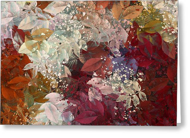 Fall Colors Greeting Cards - Naturaleaves - 88c02 Greeting Card by Variance Collections