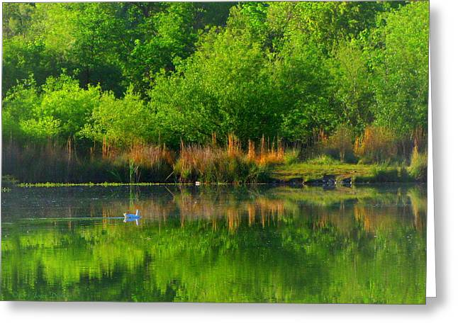Naturally Reflected Greeting Card by Joyce Dickens