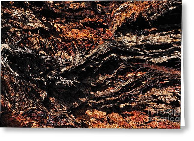 Colorful Bark Greeting Cards - Nature Abstract - Texture Greeting Card by Kaye Menner