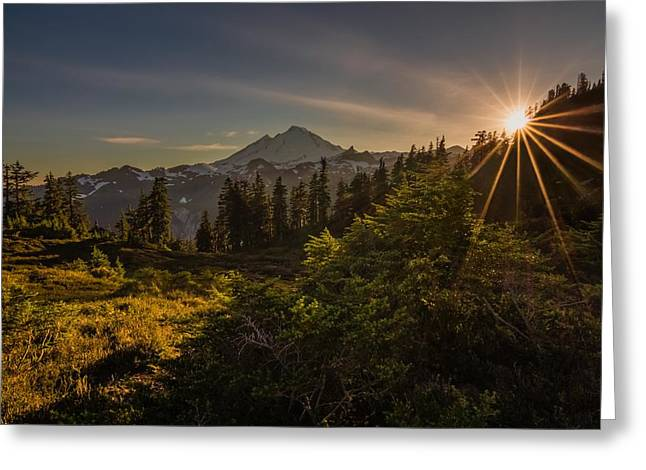 Sun Baker Greeting Cards - Nature Beams Greeting Card by Gene Garnace