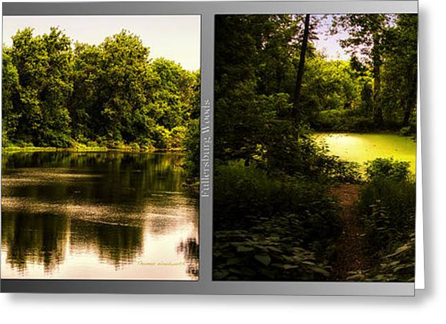 Nature Center Pond Greeting Cards - Nature Center 01 End Of Path Fullersburg Woods 2 Panel Greeting Card by Thomas Woolworth