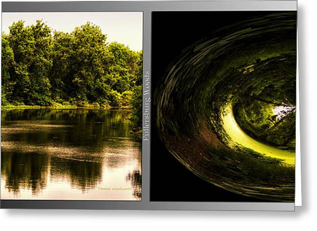Nature Center Pond Greeting Cards - Nature Center 01 End Of The Path Polar View Fullersburg Woods 2 Panel Greeting Card by Thomas Woolworth