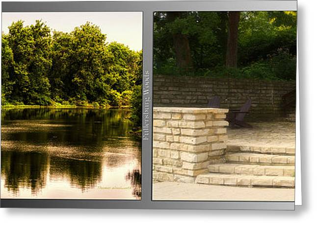 Nature Center Pond Greeting Cards - Nature Center 01 Flagstone Patio Fullersburg Woods 2 Panel Greeting Card by Thomas Woolworth