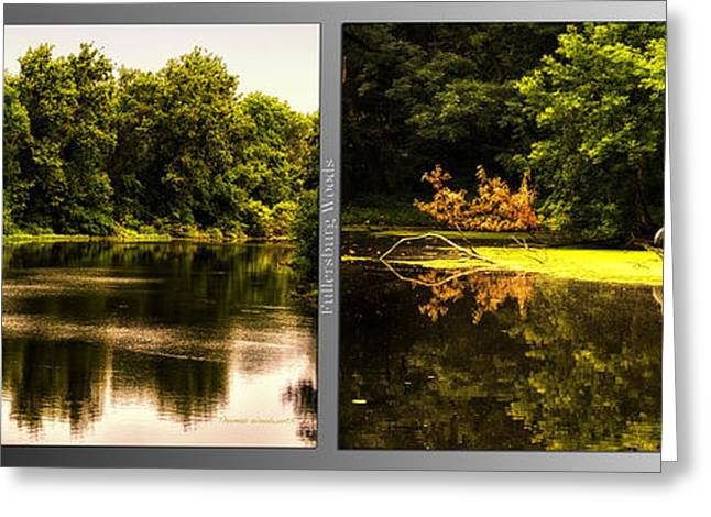Nature Center Pond Greeting Cards - Nature Center 01 Looking For Breakfast Fullersburg Woods 2 Panel Greeting Card by Thomas Woolworth