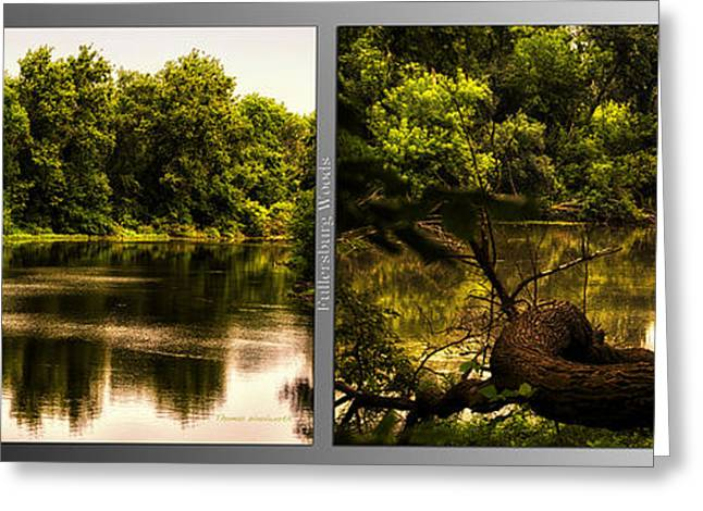 Nature Center Pond Greeting Cards - Nature Center 01 Natural Seating Fullersburg Woods 2 Panel Greeting Card by Thomas Woolworth