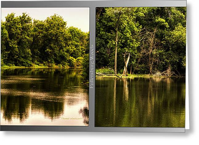 Nature Center Pond Greeting Cards - Nature Center 01 Salt Creek In August Fullersburg Woods 2 Panel Greeting Card by Thomas Woolworth