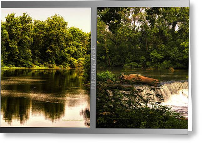 Nature Center Pond Greeting Cards - Nature Center 01 Teeter Totter Log Fullersburg Woods 2 Panel Greeting Card by Thomas Woolworth