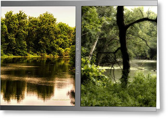 Nature Center Pond Greeting Cards - Nature Center 01 Tree Silhouette Fullersburg Woods 2 Panel Greeting Card by Thomas Woolworth