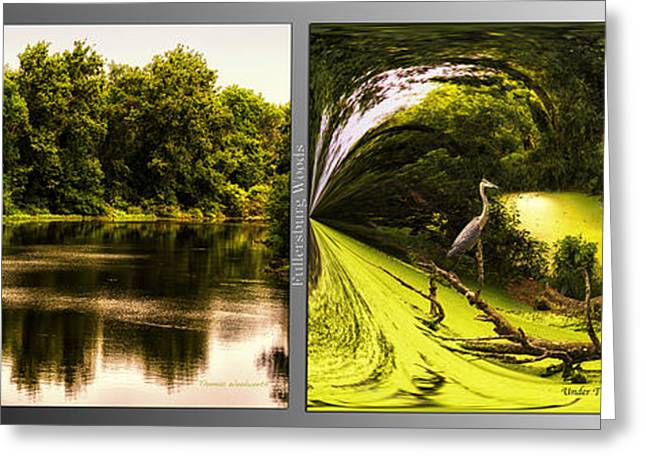 Nature Center Pond Greeting Cards - Nature Center 01 Under The Canopy Fullersburg Woods 2 Panel Greeting Card by Thomas Woolworth