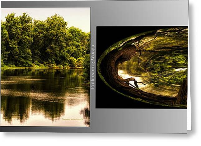 Nature Center Pond Greeting Cards - Nature Center 01 Wood Polar View Fullersburg Woods 2 Panel Greeting Card by Thomas Woolworth