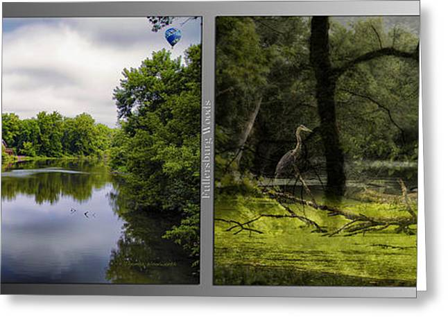 Nature Center Pond Greeting Cards - Nature Center 02 Bird Tree Silhouette Merge  Fullersburg Woods 2 Panel Greeting Card by Thomas Woolworth