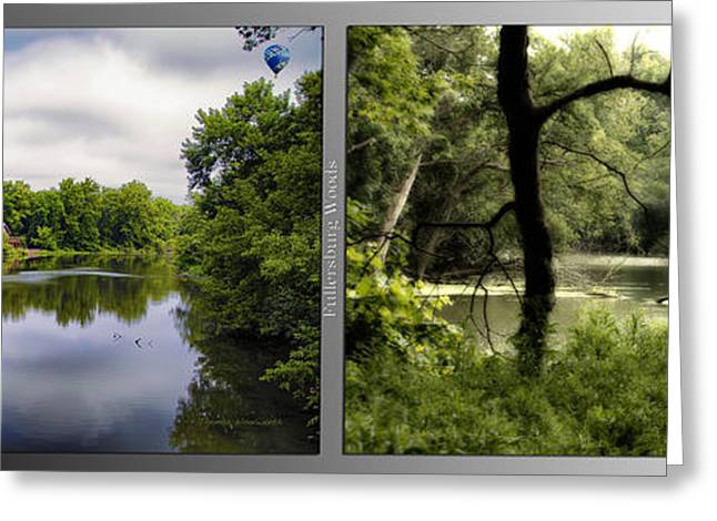 Nature Center Pond Greeting Cards - Nature Center 02 Tree Silhouette Fullersburg Woods 2 Panel Greeting Card by Thomas Woolworth