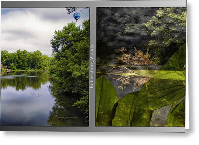 Nature Center Pond Greeting Cards - Nature Center 02 Water Plant Bird Merge Fullersburg Woods 2 Panel Greeting Card by Thomas Woolworth