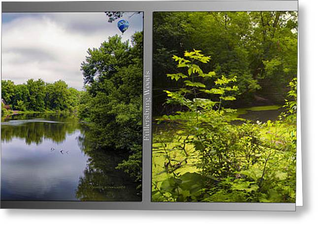 Nature Center Pond Greeting Cards - Nature Center 02 With Bridge Fullersburg Woods 2 Panel Greeting Card by Thomas Woolworth